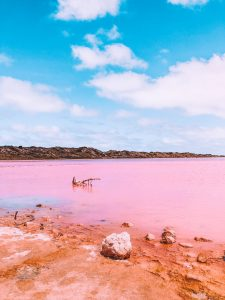 Pink lake, port gregory, ineedvitaminsea