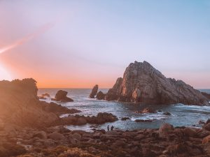 Cape Naturalist Leeuwin, Côte ouest
