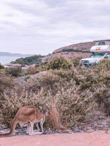 Esperance, côte ouest australie