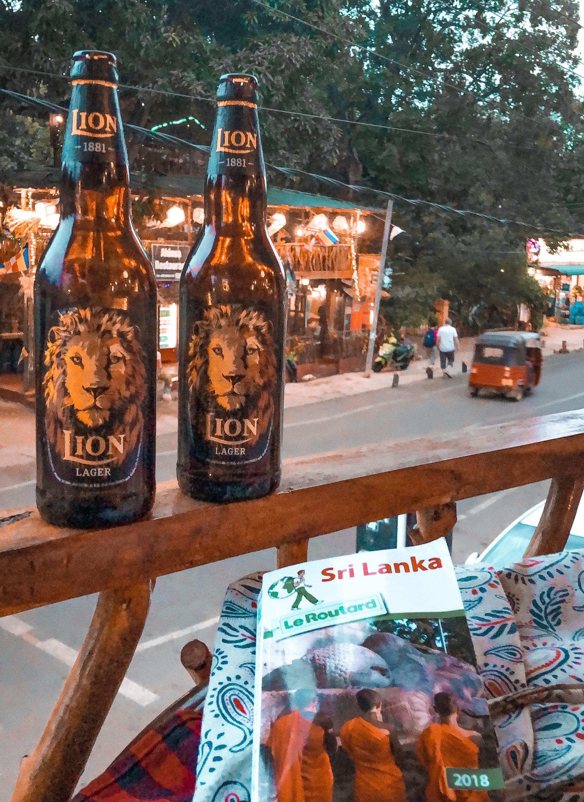 Homestay, bières locales sri lanka, lion's beer